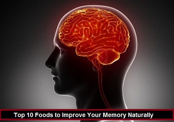 Top 10 Foods to Improve Your Memory Naturally