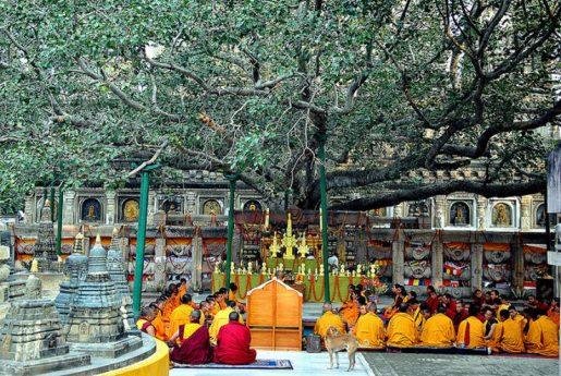 Top 10 Best Places to Visit in Bihar