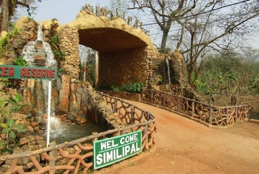 Top 10 best places to visit in Odisha