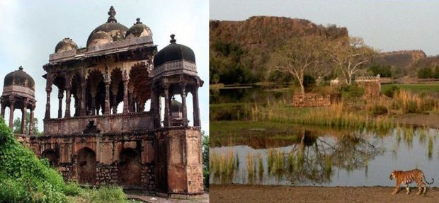 Ranthambore Top 10 Best Places to Visit in India